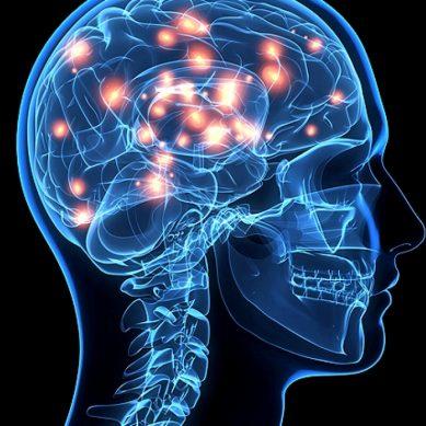 Έλληνας επιστήμονας αποκωδικοποίησε τα νευρικά σήματα του ανοσοποιητικού συστήματος προς τον εγκέφαλο