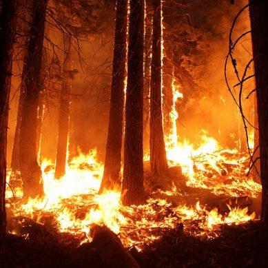 Ο ΙΣΑ κάνει έκκληση να παραμείνουν ανοιχτά τα ιατρεία των περιοχών που επλήγησαν από τις πυρκαγιές