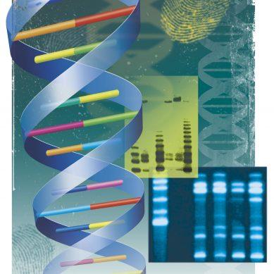Στη 15η θέση υπέγραψε η Ελλάδα, τη διακήρυξη για τη δημιουργία βάσης δεδομένων για το ανθρώπινο γονιδίωμα