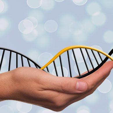 H Ελλάδα υπέγραψε τη διακήρυξη για τη δημιουργία βάσης δεδομένων για το ανθρώπινο γονιδίωμα