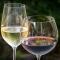 Προστάτης: Τα Χριστούγεννα να προτιμήσω λευκό ή κόκκινο κρασί;