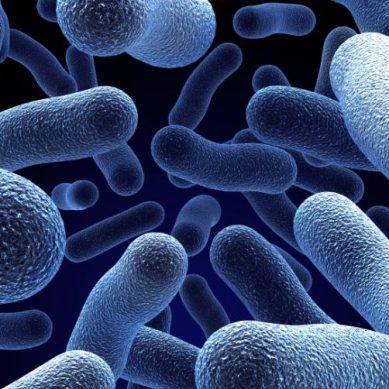 Ανακαλύφθηκε νέα ένωση που «σκοτώνει» ανθεκτικά μικρόβια