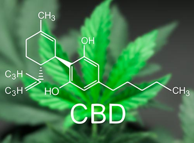 CBD:  Ένας πολύτιμος φυσικός σύμμαχος για την Υγεία σου
